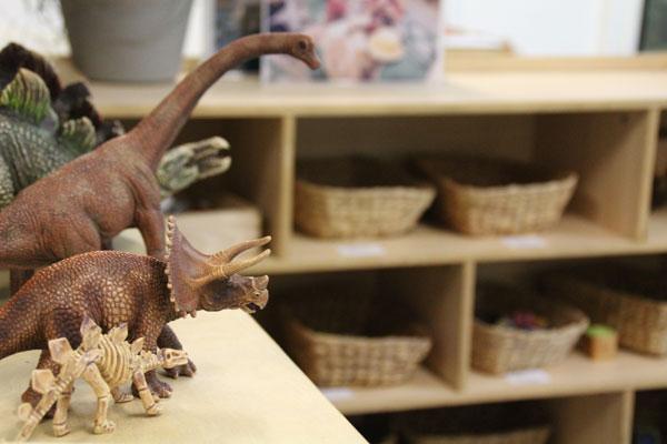 Rainbow Valley Toddler room, dinosaurs